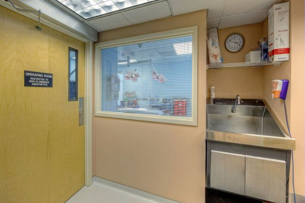 Operating room viewing window